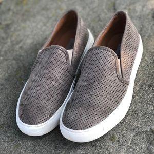 Steve madden gray sneakers